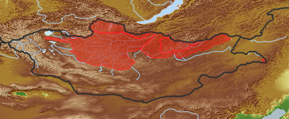 taxon distribution for Diplazium sibiricum acc. to Geobotanical Regions of Mongolia by Grubov (1955)