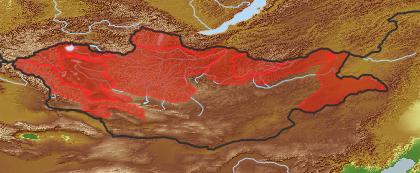 taxon distribution for Galatella dahurica acc. to Geobotanical Regions of Mongolia by Grubov (1955)
