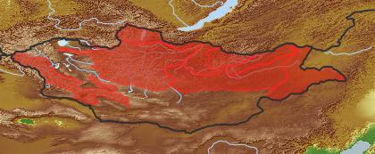 taxon distribution for Arctogeron gramineum acc. to Geobotanical Regions of Mongolia by Grubov (1955)