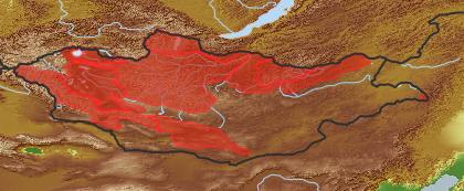 taxon distribution for Salix taraikensis acc. to Geobotanical Regions of Mongolia by Grubov (1955)