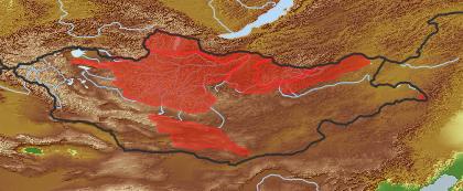 taxon distribution for Aegopodium  acc. to Geobotanical Regions of Mongolia by Grubov (1955)