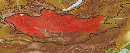 taxon distribution for Angelica tenuifolia acc. to Geobotanical Regions of Mongolia by Grubov (1955)