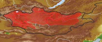 taxon distribution for Larix sibirica acc. to Geobotanical Regions of Mongolia by Grubov (1955)