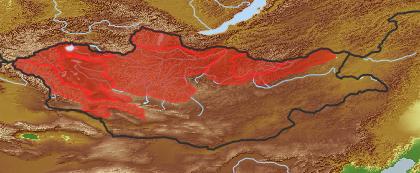 taxon distribution for Erigeron lonchophyllus acc. to Geobotanical Regions of Mongolia by Grubov (1955)