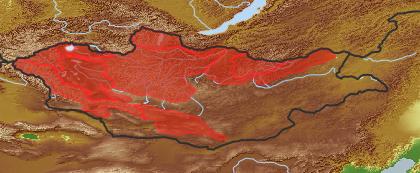 taxon distribution for Pedicularis uliginosa acc. to Geobotanical Regions of Mongolia by Grubov (1955)