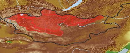 taxon distribution for Taraxacum mongolicum acc. to Geobotanical Regions of Mongolia by Grubov (1955)