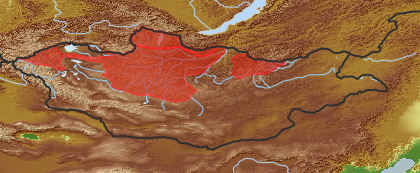 taxon distribution for Phlojodicarpus villosus acc. to Geobotanical Regions of Mongolia by Grubov (1955)