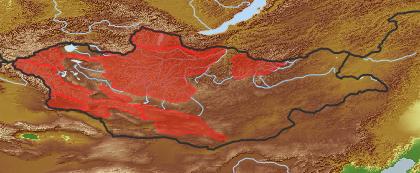 taxon distribution for Allium amphibolum acc. to Geobotanical Regions of Mongolia by Grubov (1955)