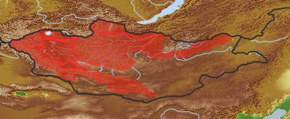 taxon distribution for Smelowskia alba acc. to Geobotanical Regions of Mongolia by Grubov (1955)