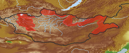 taxon distribution for Sparganium stoloniferum acc. to Geobotanical Regions of Mongolia by Grubov (1955)