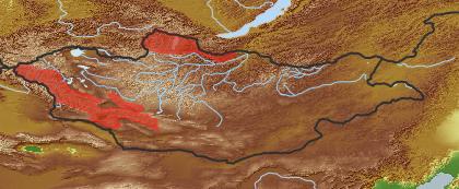 taxon distribution for Pyrethrum lanuginosum acc. to Geobotanical Regions of Mongolia by Grubov (1955)