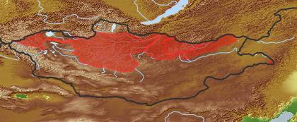taxon distribution for Bupleurum multinerve acc. to Geobotanical Regions of Mongolia by Grubov (1955)
