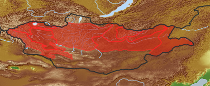 taxon distribution for Cnidium  acc. to Geobotanical Regions of Mongolia by Grubov (1955)