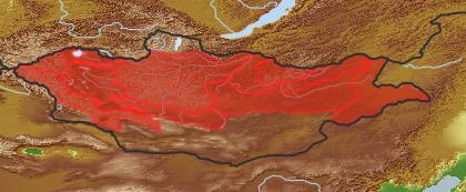 taxon distribution for Artemisia scoparia acc. to Geobotanical Regions of Mongolia by Grubov (1955)