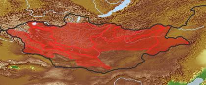 taxon distribution for Sonchus brachyotus acc. to Geobotanical Regions of Mongolia by Grubov (1955)