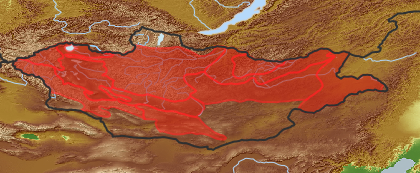 taxon distribution for Artemisia adamsii acc. to Geobotanical Regions of Mongolia by Grubov (1955)