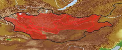 taxon distribution for Cirsium setosum acc. to Geobotanical Regions of Mongolia by Grubov (1955)