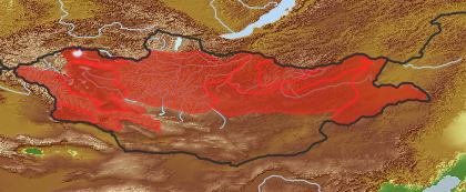 taxon distribution for Bidens tripartita acc. to Geobotanical Regions of Mongolia by Grubov (1955)