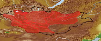 taxon distribution for Malva  acc. to Geobotanical Regions of Mongolia by Grubov (1955)