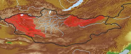 taxon distribution for Salix dasyclados acc. to Geobotanical Regions of Mongolia by Grubov (1955)