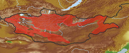 taxon distribution for Cuscuta europaea acc. to Geobotanical Regions of Mongolia by Grubov (1955)