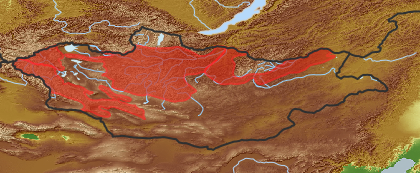 taxon distribution for Taraxacum bornuurense acc. to Geobotanical Regions of Mongolia by Grubov (1955)