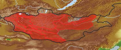 taxon distribution for Saussurea laciniata acc. to Geobotanical Regions of Mongolia by Grubov (1955)