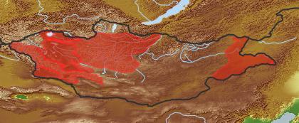 taxon distribution for Tulipa uniflora acc. to Geobotanical Regions of Mongolia by Grubov (1955)