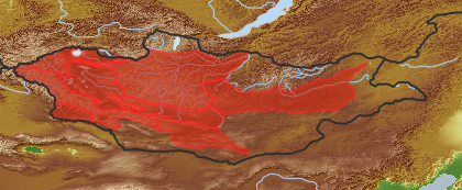 taxon distribution for Scorzonera ikonnikovii acc. to Geobotanical Regions of Mongolia by Grubov (1955)