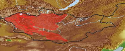 taxon distribution for Euphorbia potaninii acc. to Geobotanical Regions of Mongolia by Grubov (1955)