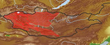 taxon distribution for Artemisia obtusiloba acc. to Geobotanical Regions of Mongolia by Grubov (1955)
