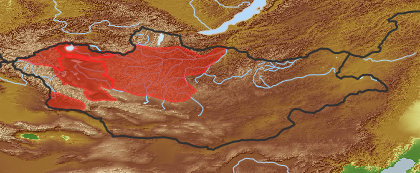 taxon distribution for Artemisia schrenkiana acc. to Geobotanical Regions of Mongolia by Grubov (1955)