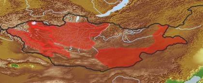 taxon distribution for Lappula granulata acc. to Geobotanical Regions of Mongolia by Grubov (1955)