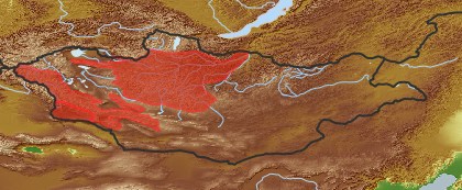 taxon distribution for Doronicum turkestanicum acc. to Geobotanical Regions of Mongolia by Grubov (1955)