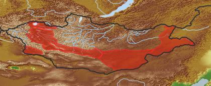 taxon distribution for Xanthium strumarium acc. to Geobotanical Regions of Mongolia by Grubov (1955)