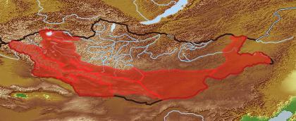 taxon distribution for Scorzonera pseudodivaricata acc. to Geobotanical Regions of Mongolia by Grubov (1955)