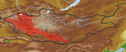 taxon distribution for Artemisia vulgaris acc. to Geobotanical Regions of Mongolia by Grubov (1955)