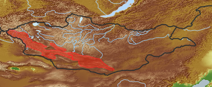 taxon distribution for Papaver saichanense acc. to Geobotanical Regions of Mongolia by Grubov (1955)