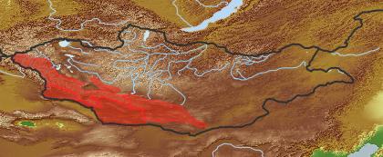 taxon distribution for Seseli grubovii acc. to Geobotanical Regions of Mongolia by Grubov (1955)